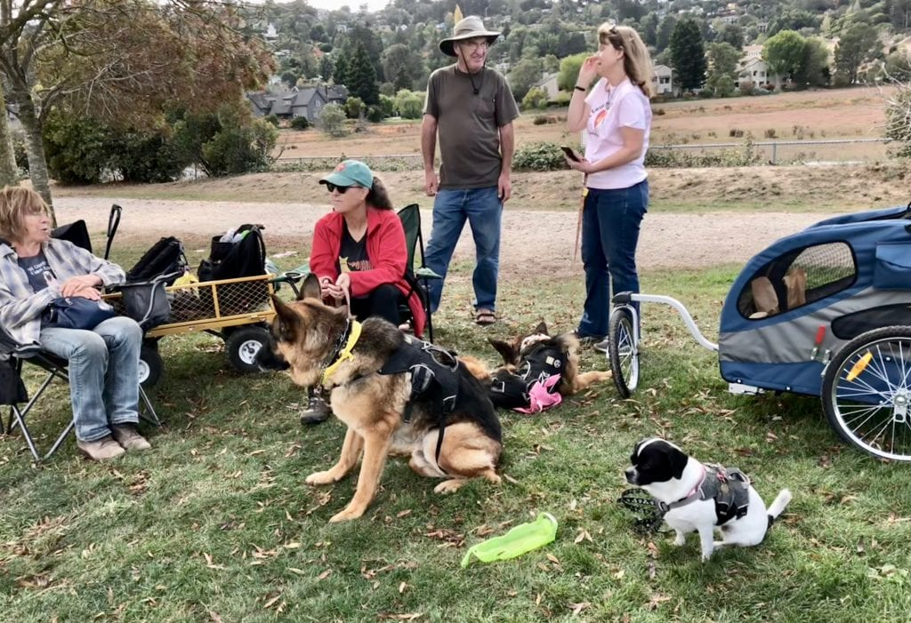 Nor-Cal-Tripawds-Nov-18.jpg